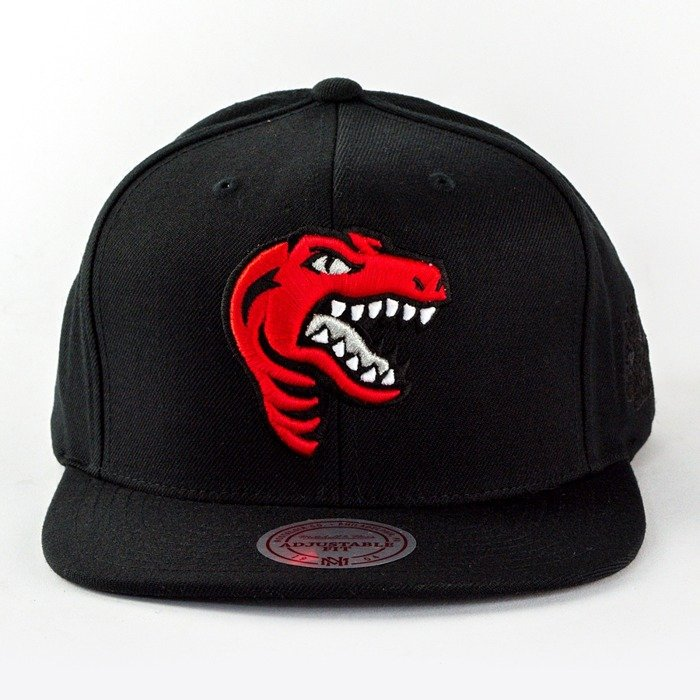 Mitchell and Ness snapback Elements Toronto Raptors black