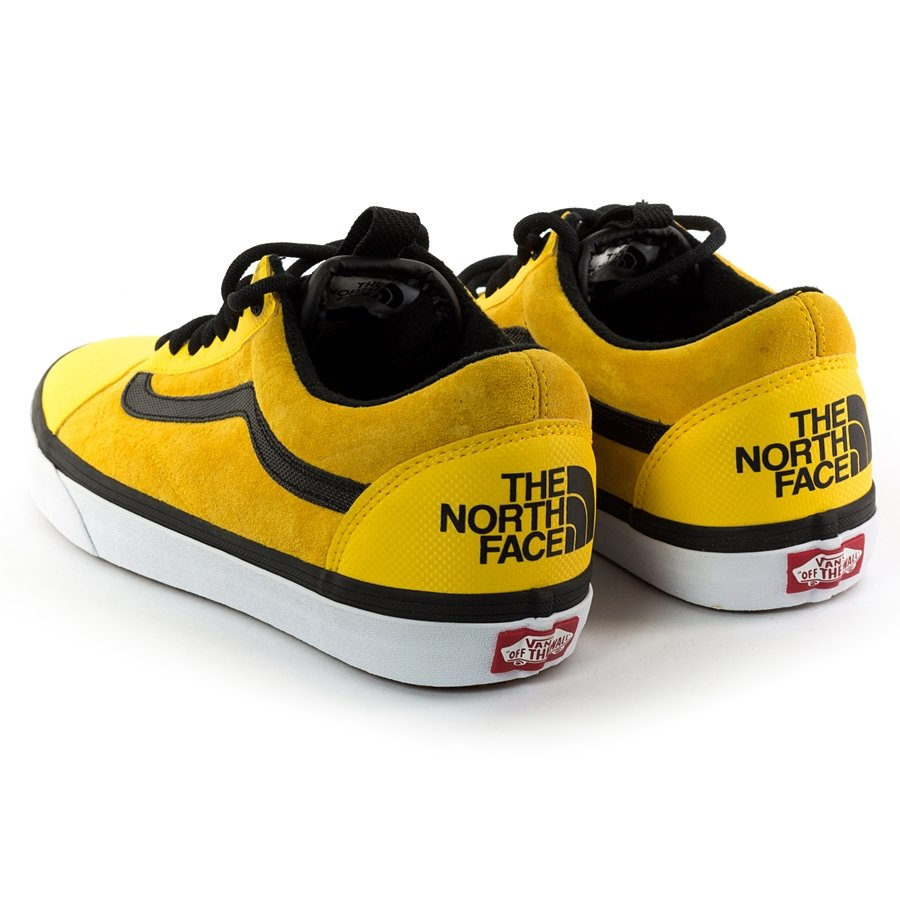 Vans x The North Face (TNF) OLD SKOOL MTE DX